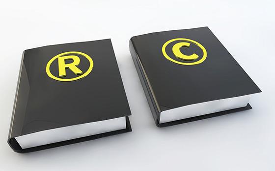 什么是专利权评估报告